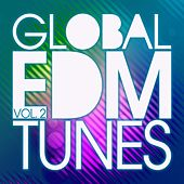 Global EDM Tunes, Vol. 2 by Various Artists