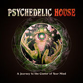 Psychedelic House - A Journey to the Center of Your Mind by Various Artists