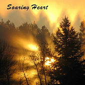Soaring Heart. Soothing Nature Sounds Wood Flute Songs by Kevin Doberstein