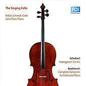 The Singing Cello by Niklas Schmidt
