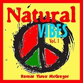 Natural Vibes, Vol. 1 by Various Artists