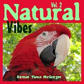 Natural Vibes, Vol. 2 by Various Artists