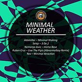 Minimal Weather by Various Artists