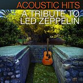 Acoustic Hits - A Tribute to Led Zeppelin by Acoustic Hits