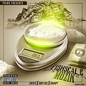 Fishscale Muzik by Various Artists