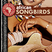 African Songbirds by Various Artists