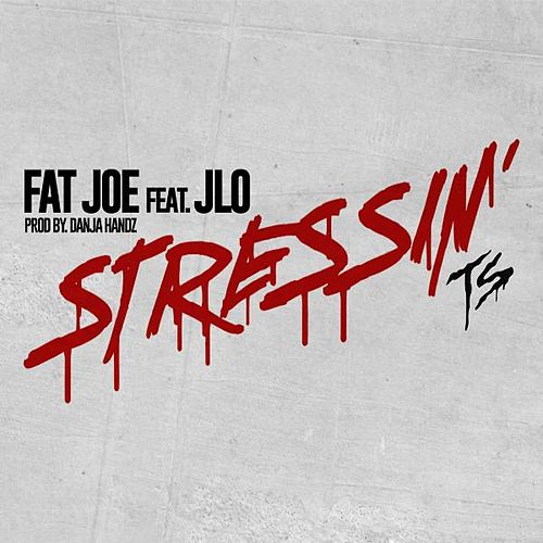 Stressin by Fat Joe