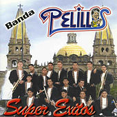 Super Exitos by Banda Pelillos