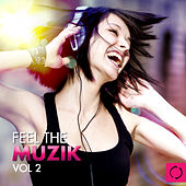 Feel the Muzik, Vol. 2 by Various Artists