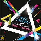 What A Feeling by Alex Gaudino