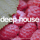 Deep House Harvesting by Various Artists