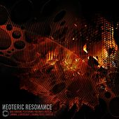 Neoteric Resonance EP by Various Artists