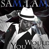 You Would by Samiam