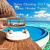 Ibiza Closing 2014 Deep House Tunes by Various Artists