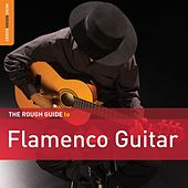 Rough Guide To Flamenco Guitar by Various Artists