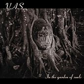 In The Garden Of Souls by Vas