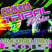 Cumbia Tribal Mix Lo Mejor Del Tribal 2015 by Dj Moys
