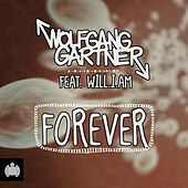 Forever by Wolfgang Gartner
