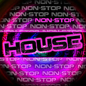 Non-Stop House by Various Artists