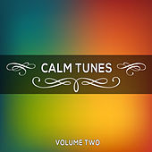 Calm Tunes, Vol. 02 by Various Artists