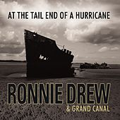At The Tail End Of A Hurricane by Ronnie Drew