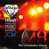 NAMA Namibian Annual Music Awards 2014 (The Compilation Album) by Various Artists