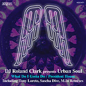 What Do I Gotta Do / President House by Urban Soul