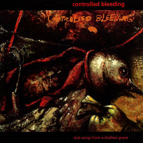 Dub Songs from a Shallow Grave by Controlled Bleeding