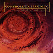 Gilded Shadows by Controlled Bleeding