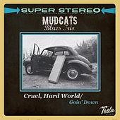 Cruel, Hard World by Mudcats Blues Trio