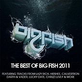 Best of Big Fish 2011 by Various Artists