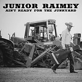 Ain't Ready for the Junkyard by Junior Raimey