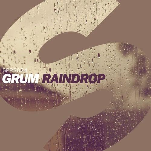 Raindrop by Grum