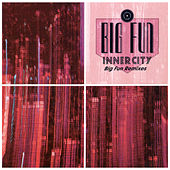 Big Fun by Inner City