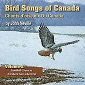 Bird Songs of Canada, Vol. 2 by John Neville