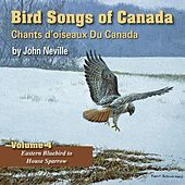 Bird Songs of Canada, Vol. 4 by John Neville