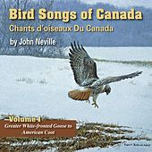 Bird Songs of Canada, Vol. 1 by John Neville