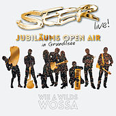 SEER Jubiläums Open Air (Live) by Seer