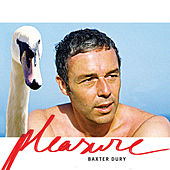 Pleasure by Baxter Dury