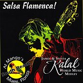 Salsa Flamenca! by James Kalal