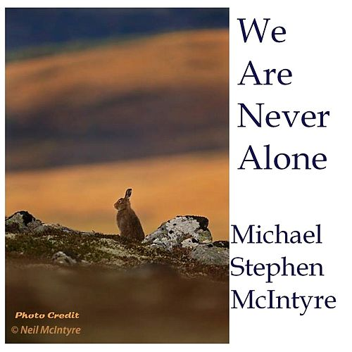We Are Never Alone by Michael Stephen McIntyre
