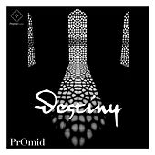 Destiny by PrOmid