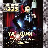 Ya quoi dans jalousie (Les hits du 225) by Various Artists