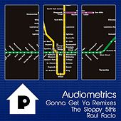 Gonna Get Ya (Remixes) by Audiometrics