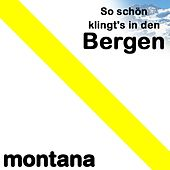 So schön klingt´s in den Bergen by Various Artists