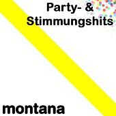 Party- & Stimmungshits by Various Artists