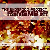 Remember by The Underdog Project