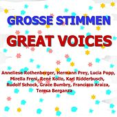 Die Großen Stimmen - The Great Voices by Various Artists