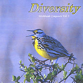 Diversity by Various Artists