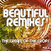 Beautiful Remixes, Vol. 2 by Various Artists